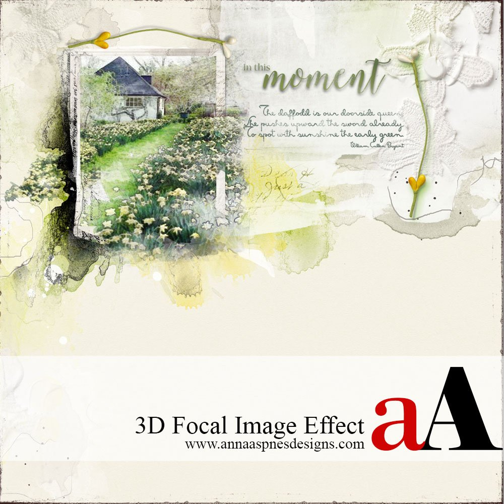 Enhance a Focal Image with a 3D Effect
