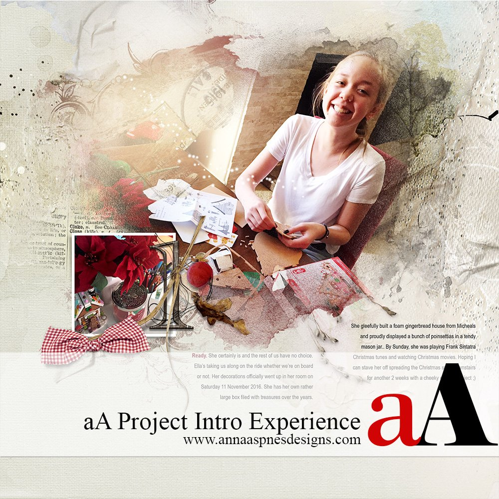 aA Project Intro Experience