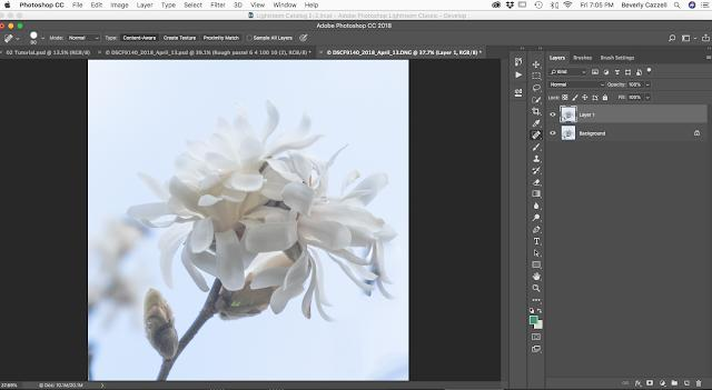 Best Photo Editing Process Tutorial
