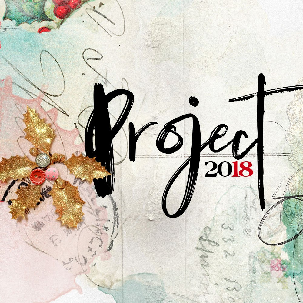 aA Project 2018 Details