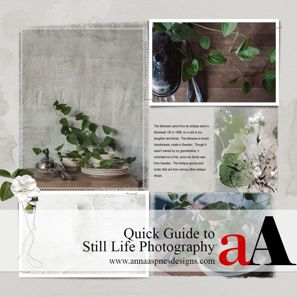Quick Guide to Still Life Photography
