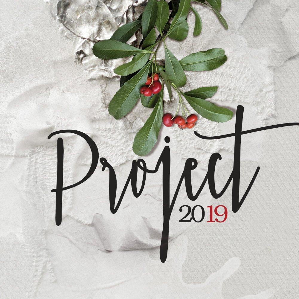 Hello aA Project 2019