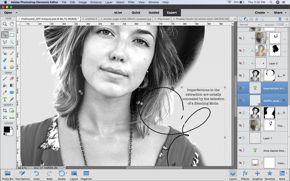 Double Exposure Technique in PhotoshopElements - Image 3