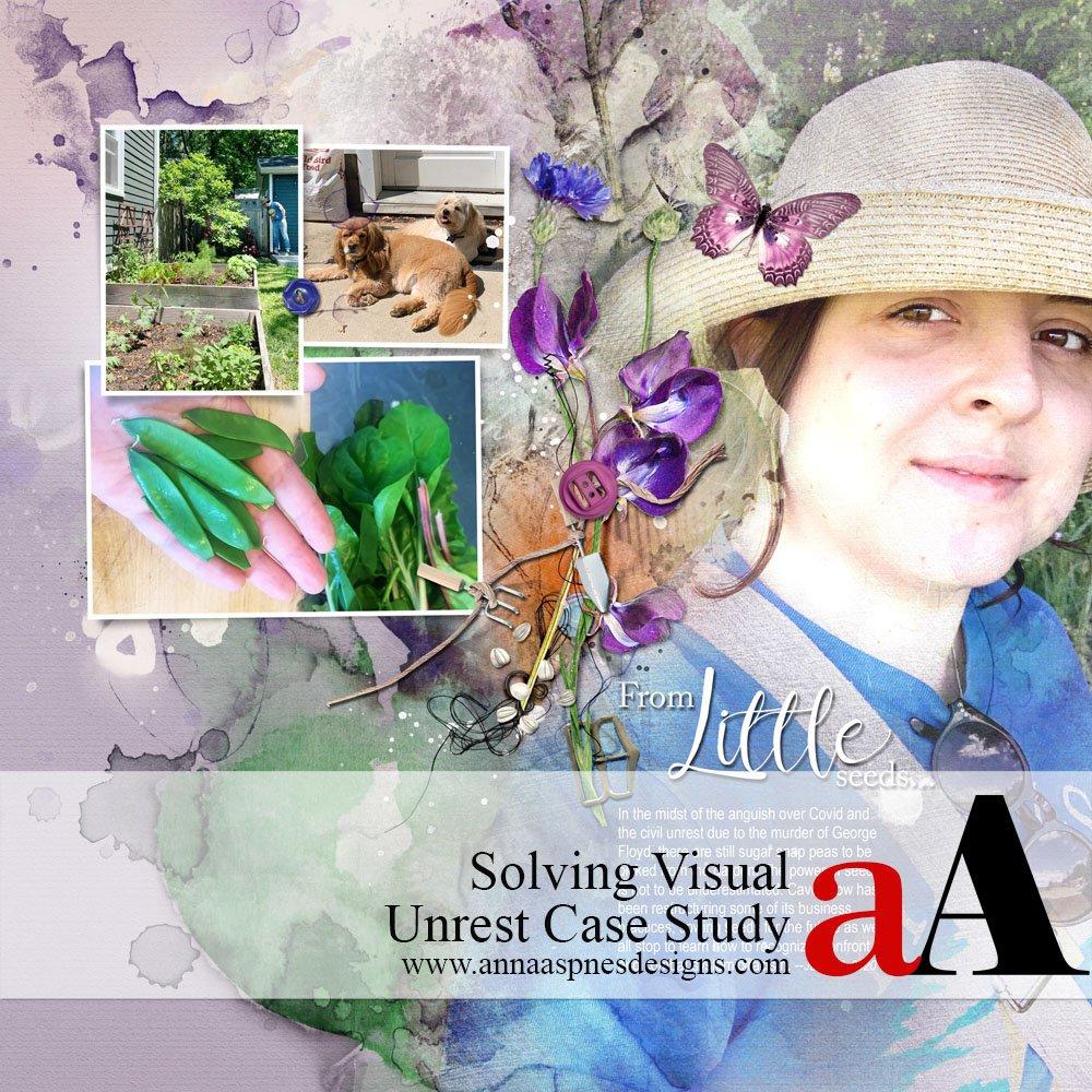 Solving Visual Unrest Case Study