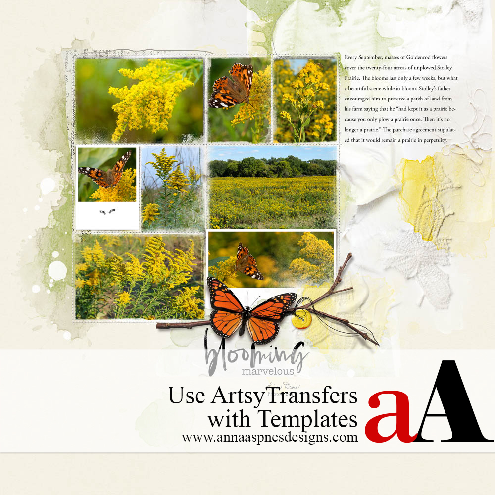 Use ArtsyTransfers with Templates