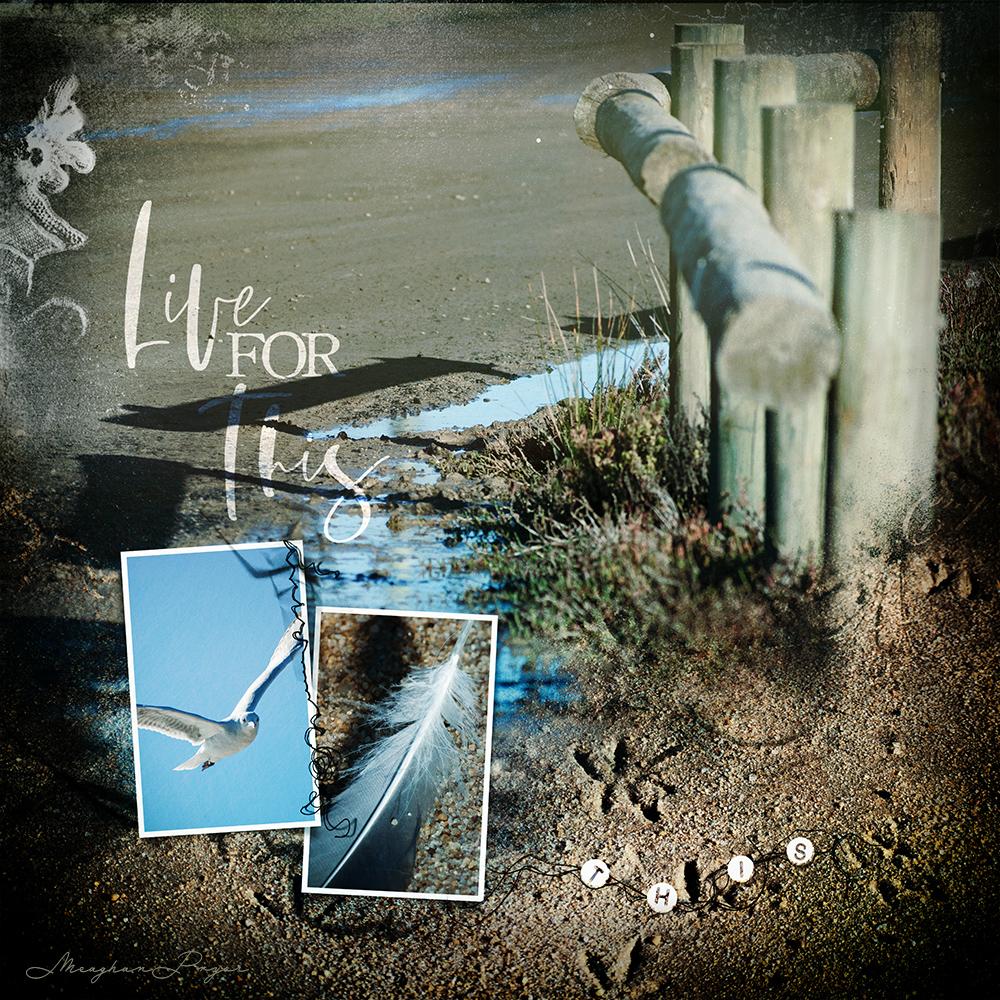 Scenic Template Album No. 4 Video Inspiration